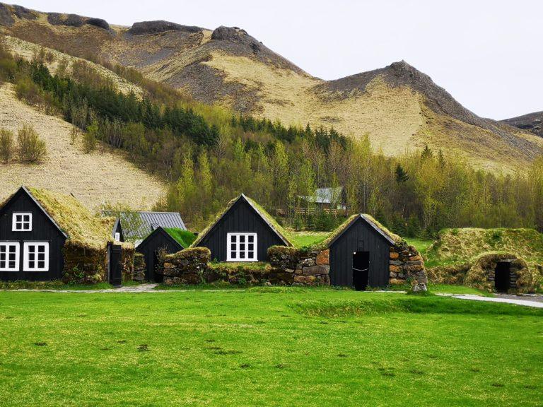 grüne Häuser in Island